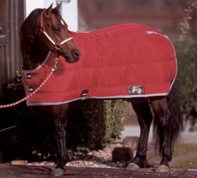 blanket_bigd_kodiak_stable