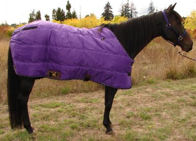 blankets_cozy_cz30_deluxe_stableblanket.jpg