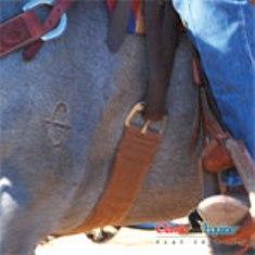 cinches_classic_equine_alpaca_action.jpg