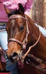 noseband_weaver_leather_pretty_pink_action_shot.jpg