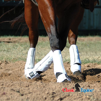 protectiveboots_classicequine_pt100_protech_white.jpg