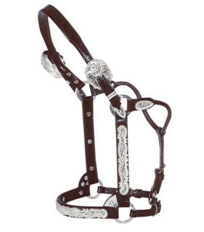 Circle Y Berry Edge Show Halter