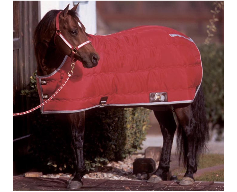 blanket_bigd_kodiak_stable_thumb