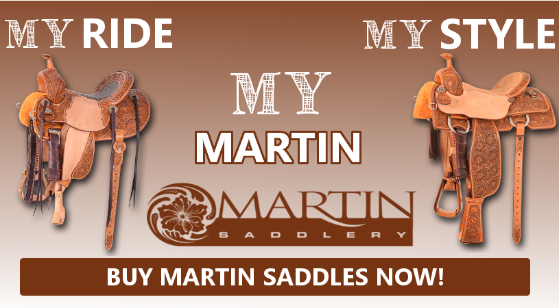 martinsaddlebanner