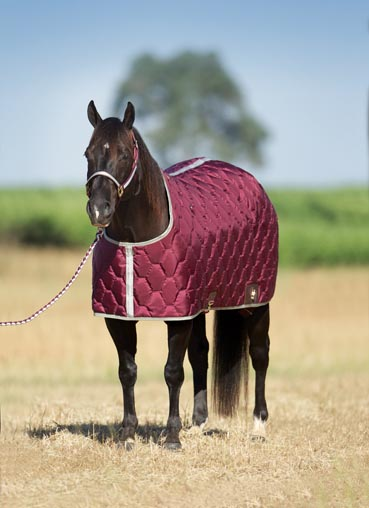 Big D All American Stable Blanket