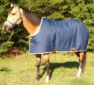 Big D Sterling Stable Cut Turnout Blanket 600D