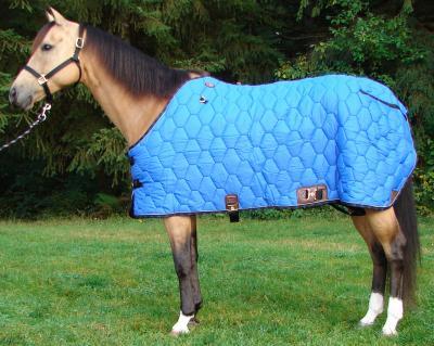 blanket_cozy_cz14_blanket.jpg