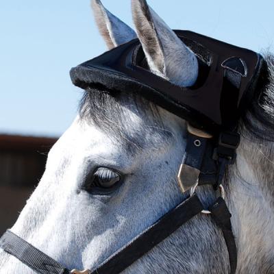 helmets_cashel_horse_helmet.jpg