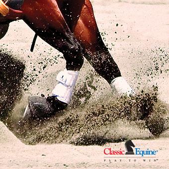 protectiveboots_classicequine_leg_care_classic_splint_boot_on_horse.jpg