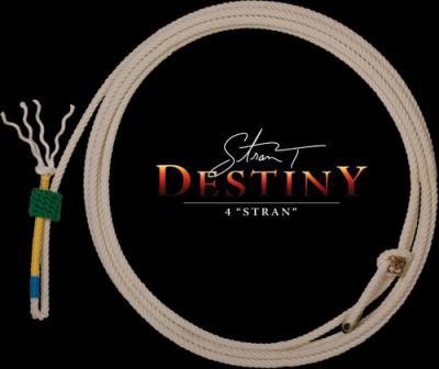 ropes_calf_destiny.jpg